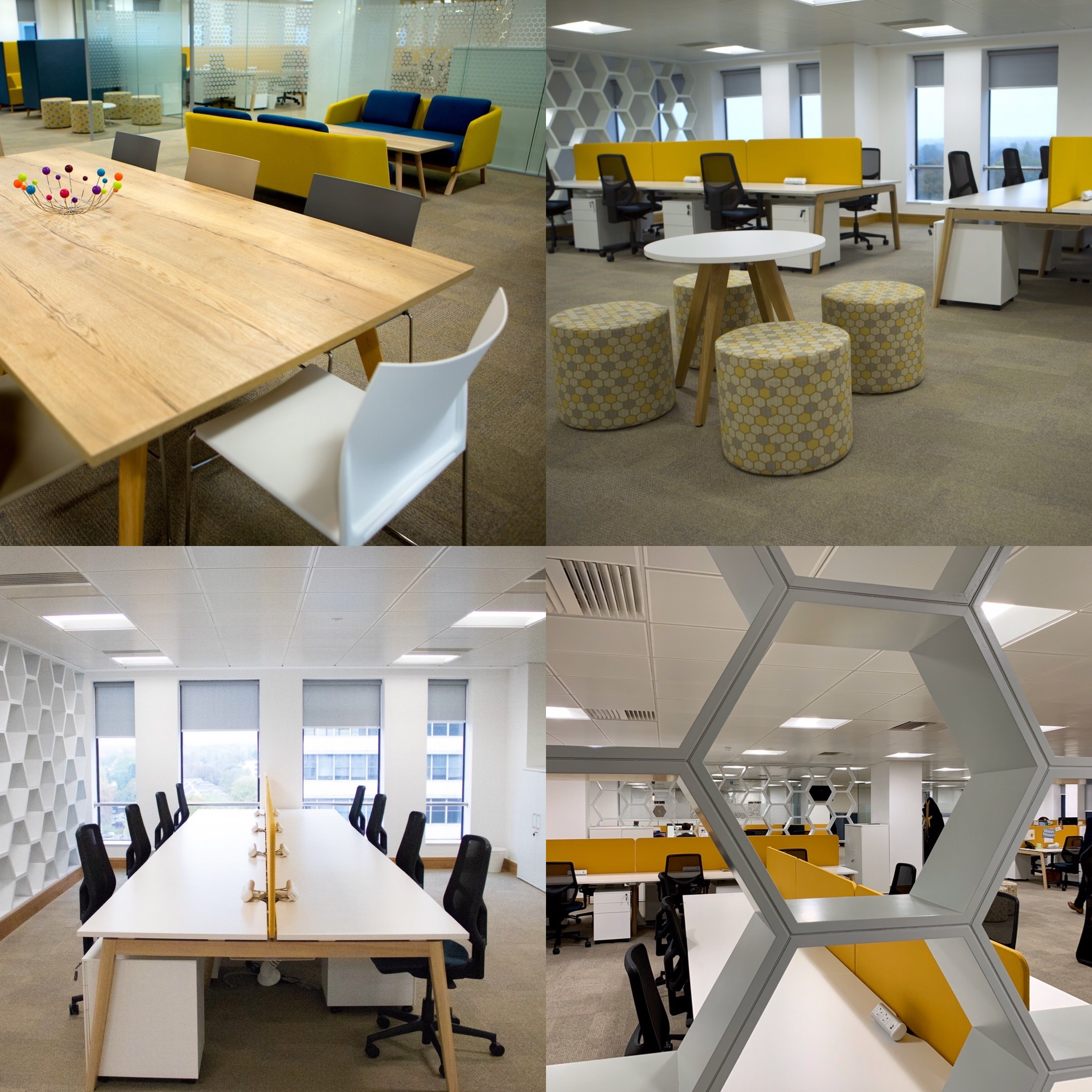 Hive360's Office