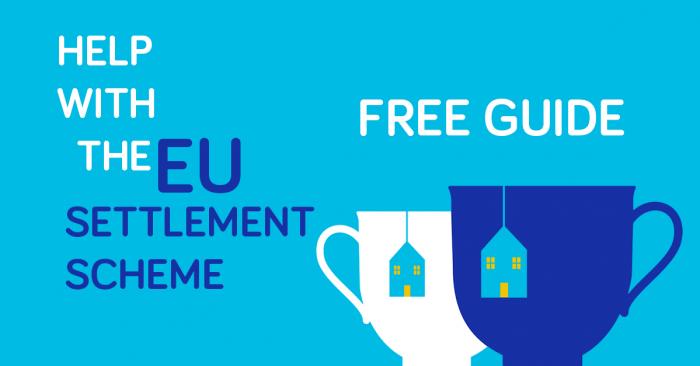 EU Settlement Guide